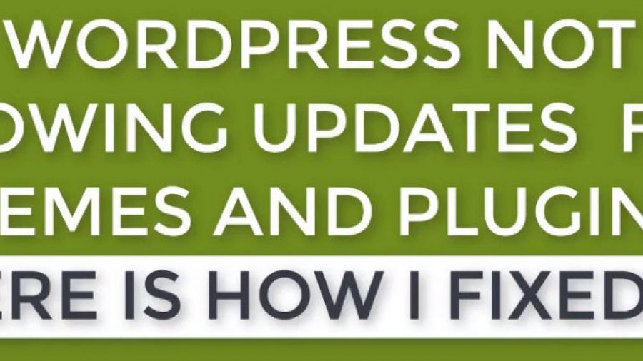 Fix Wordpress Plugins & Themes Not Showing Update Availability
